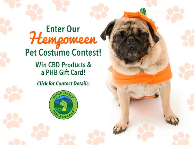 hempoween-pet-contest-ad
