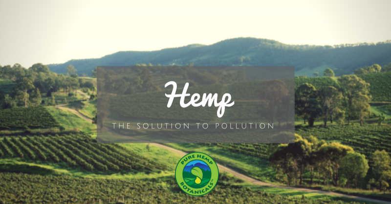 hemp solution to pollution