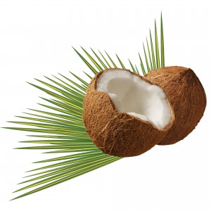 hangover coconut water hydration