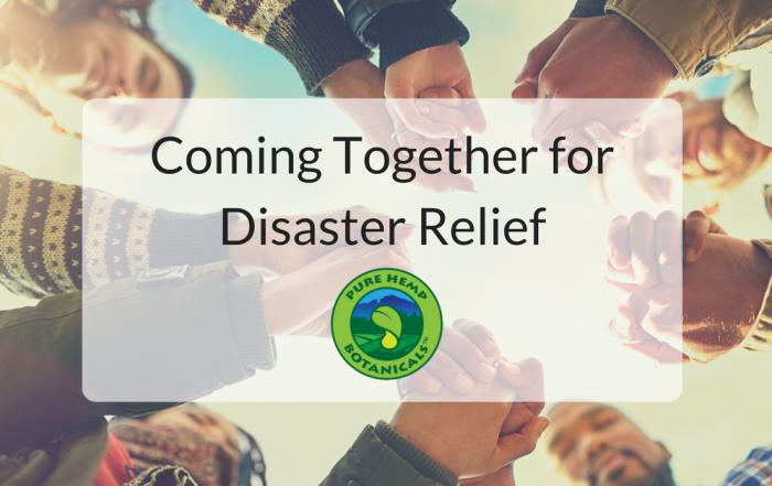 disaster relief, irma, hurricane, flood, help, pure hemp botanicals, releaf