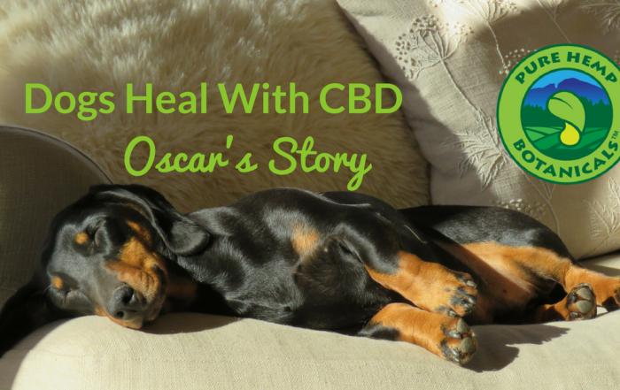 pure hemp botanicals, cbd for dogs