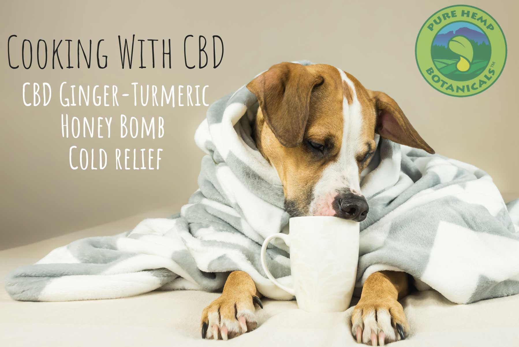 Cooking With CBD: Ginger-Turmeric Honey Bomb For Cold Relief!