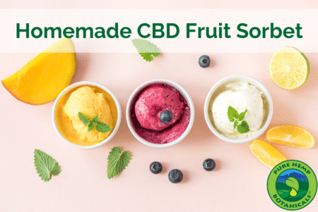 Cooking With CBD: Homemade CBD Fruit Sorbet