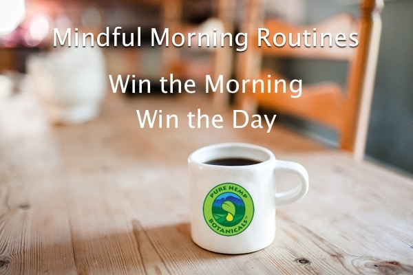 Mindful Morning Routines