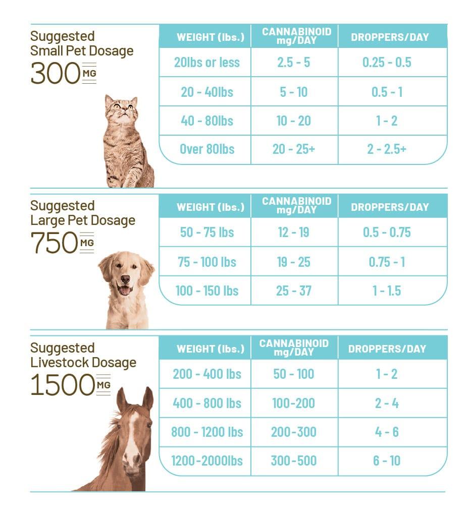Pet CBD Dosage