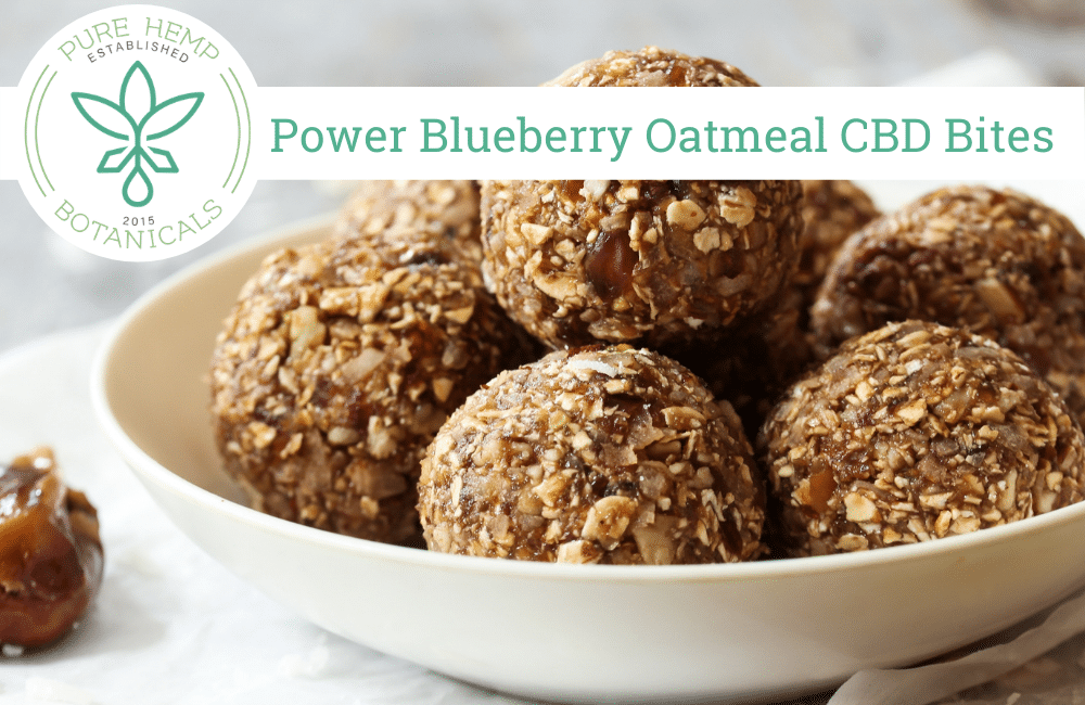 Power Blueberry Oatmeal CBD Bites