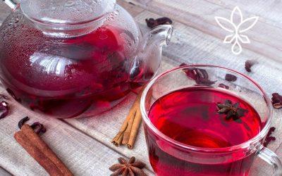 Apple Hibiscus Holiday Hemp Tea