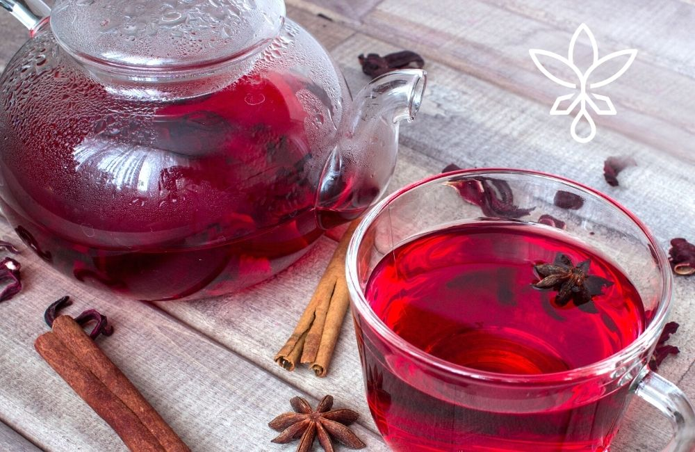 Apple Hibiscus Holiday Hemp Tea