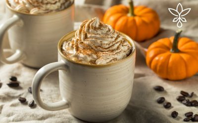 Homemade Pumpkin Spice CBD Coffee Creamer