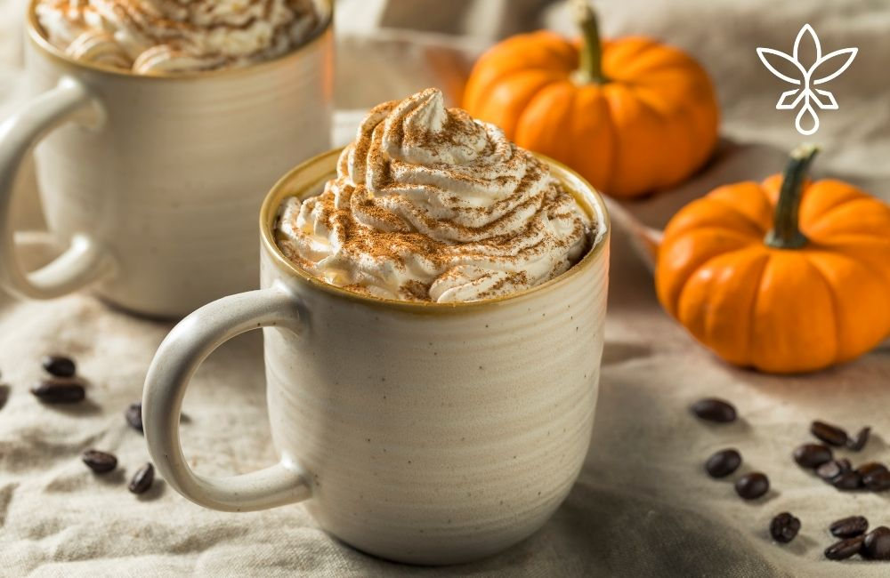 Homemade Pumpkin Spice CBD Coffee Creamer
