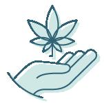 Pure Sleep Cannabinoids