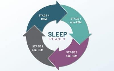 Sleep Cycle: What Is REM Sleep?