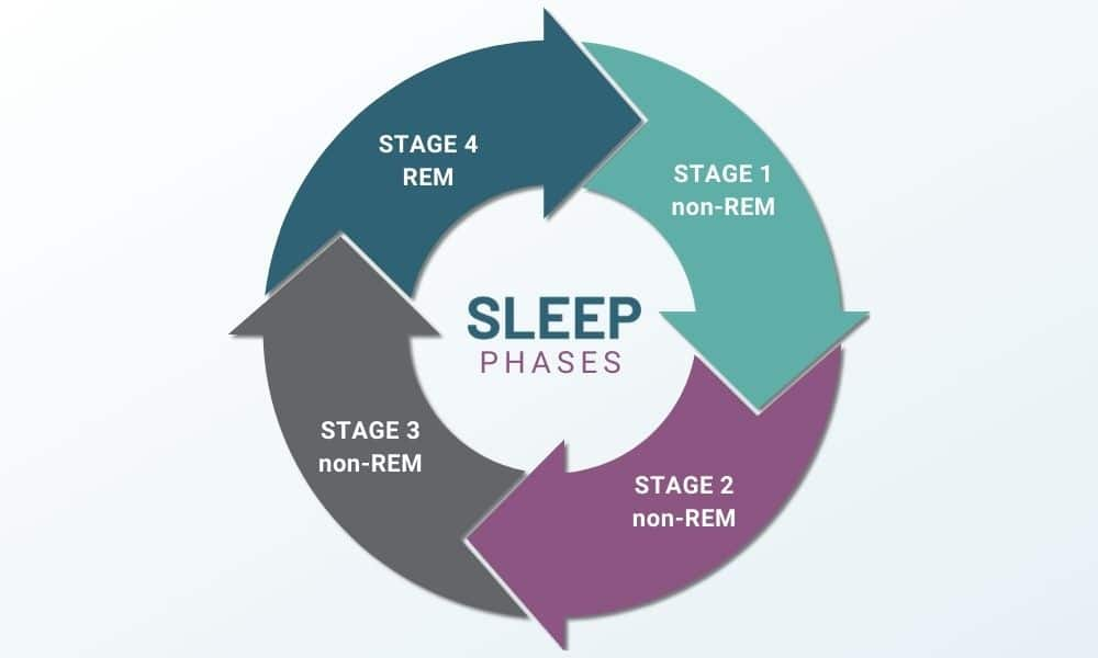Sleep Cycle: What Is REM Sleep?