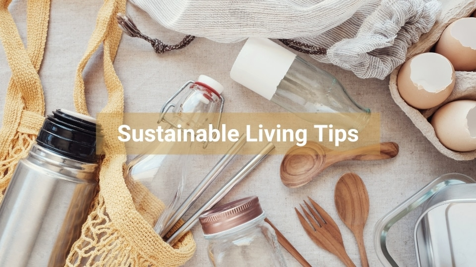Eco-Friendly Sustainable Living Tips